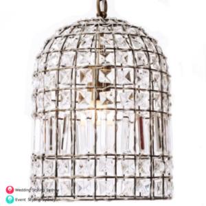 Antique-crystal-birdcage-chandelier
