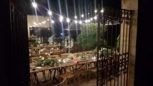 centennial-vineyards-wedding-festoon-lights-bowral